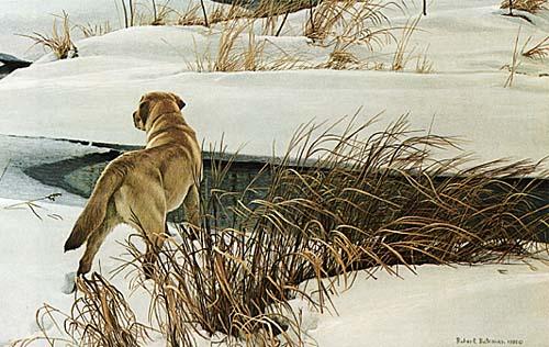Robert Bateman Art Print Screened Porch Black Lab Dog Old Buggy /& Winter Birds